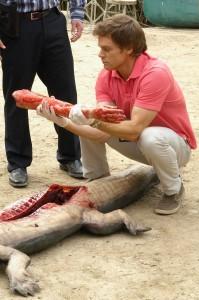 Dexter bewundert einen Arm, der in einem toten Krokodil steckte. (Quelle: Paramount Home Entertainment)