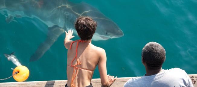 Kate will einen Hai anfassen (Quelle: Universum Film)