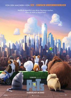 """Das Teaser-Plakat zu """"PETS"""" (© Universal Pictures International)"""