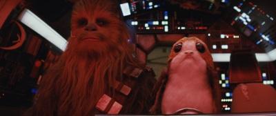 Hat Chewbacca einen neuen Co-Piloten gefunden? (©Walt Disney Studios Motion Pictures Germany)