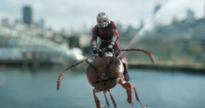 Ant-Man auf dem passenden Gefährt (©Marvel Studios 2018)