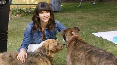 Elizabeth liebt gerade nur noch Hunde (© Koch Films)